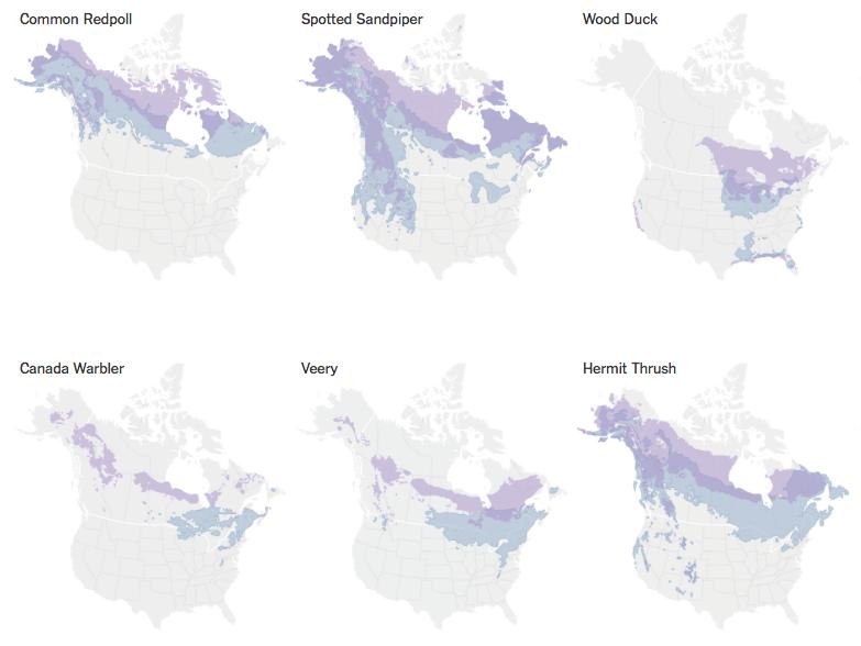 Times Maps