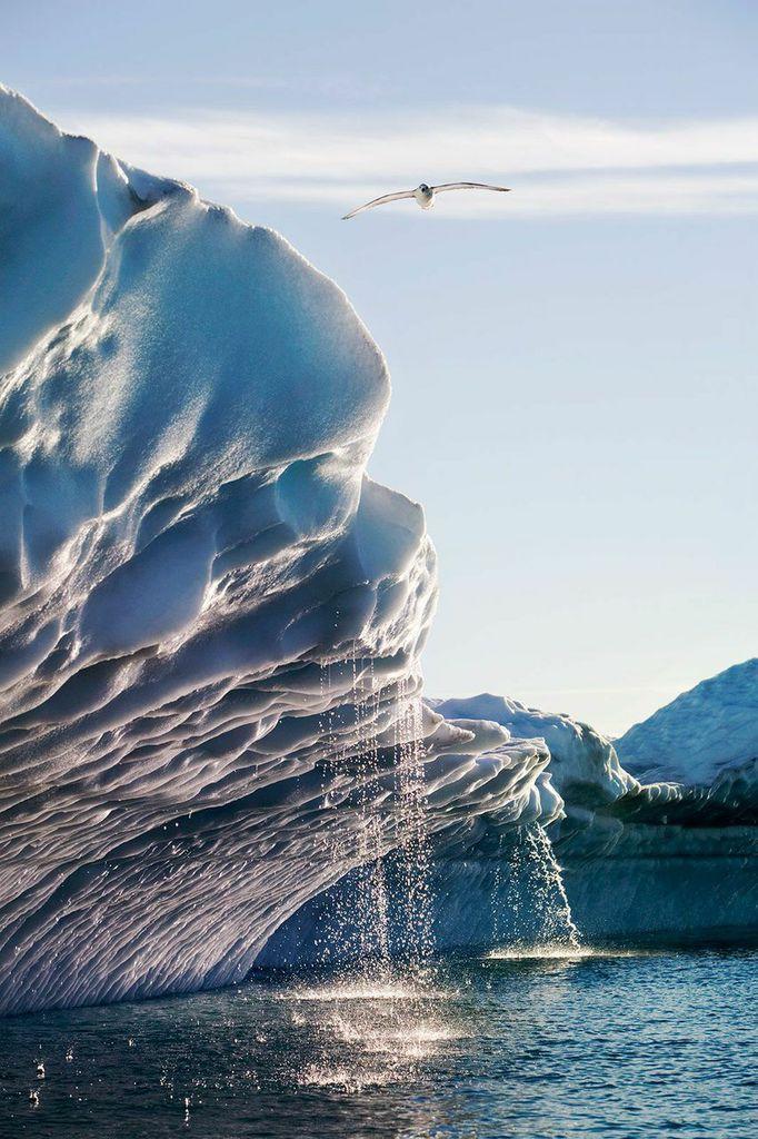 Fast-melting Glacier
