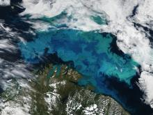 Aerial photography of Phytoplankton blooms.
